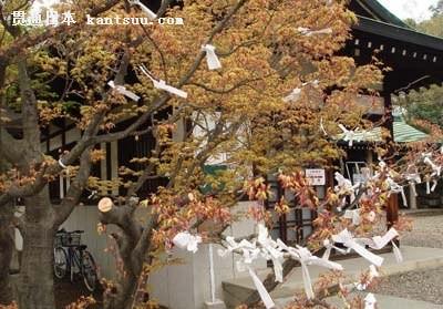 闲庭信步日本大阪城公园