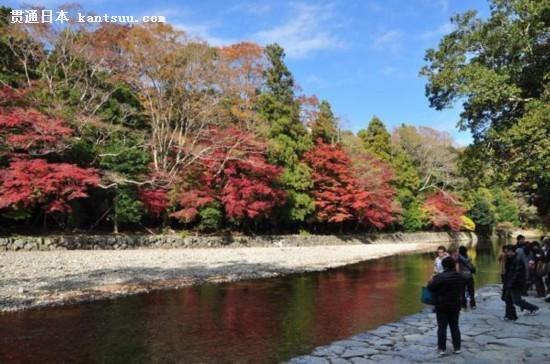 红叶 奈良公园 兼六园