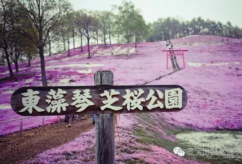 【 日本要免签?赴日旅游你需要注意这些!!}】