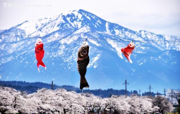 尤其是在该县胜山市的一条名叫九头龙河流两岸盛开的粉红色樱花与空中