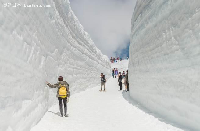 立山黑部雪墙开山壮观撼人,被喻为日本的阿尔卑斯山。(图/shutterstock提供)